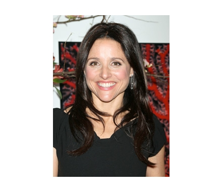 Julia Louis Dreyfuss (The New Adventures of Old Christine Mom - CBS)