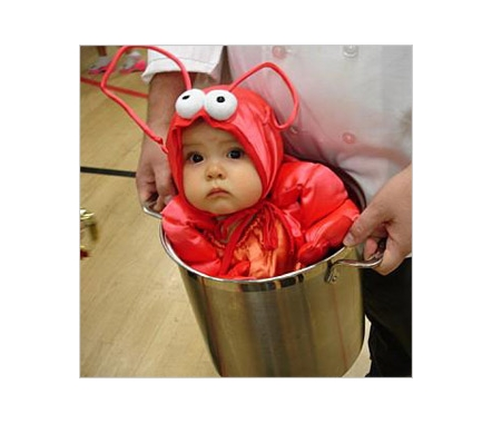 Return to Halloween Costumes are Cruel to Babies